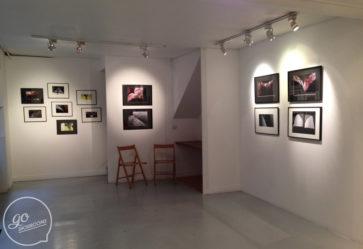 Showroom 60m2 – ref_187 photo 3