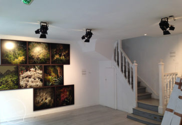 Showroom 75m2 – ref_109 photo 0
